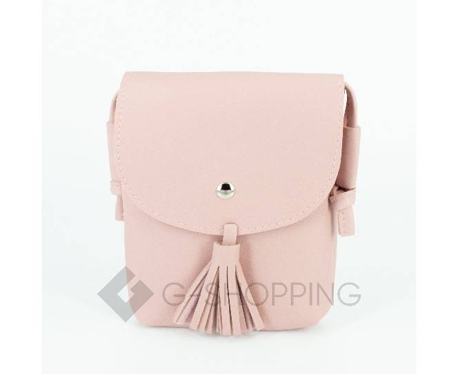 Женская маленькая розовая сумка на магнитной кнопке C097, фото 4