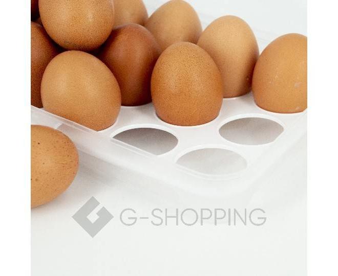 Контейнер для яиц RYP-06 белый USLANBFAY, фото 3