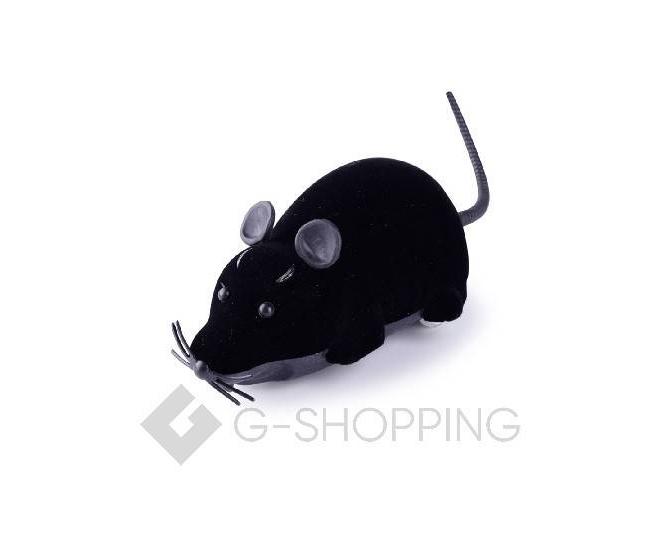 Мышка на радиоуправлении для домашних питомцев черная, фото 1