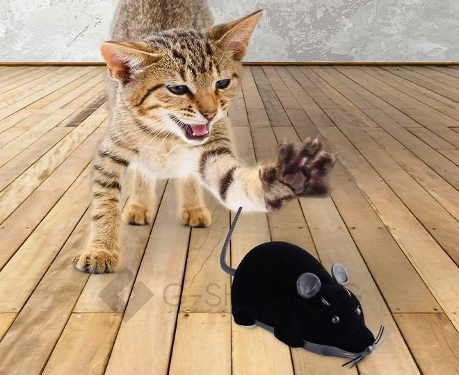 Мышка на радиоуправлении для домашних питомцев черная, фото 2