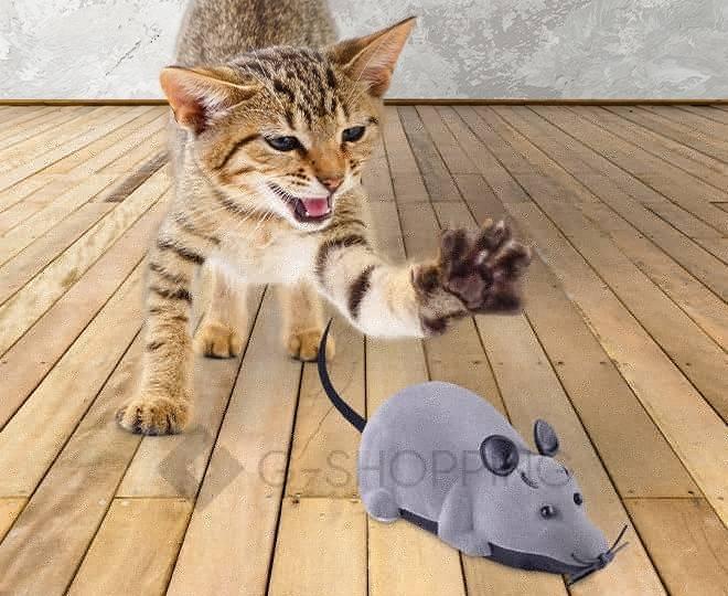 Мышка на радиоуправлении для домашних питомцев серая, фото 2